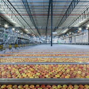 09. bamco packing facility - interior #1