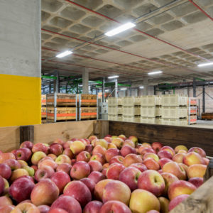 12. bamco packing facility - interior #20